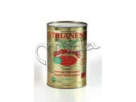 POLPA Tomate Bte 5/1 - Strianese